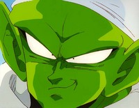 piccolo_pc0326_17